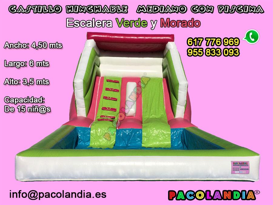 27-Castillo Hinchable con Piscina. Escalera-Verde y Morado.